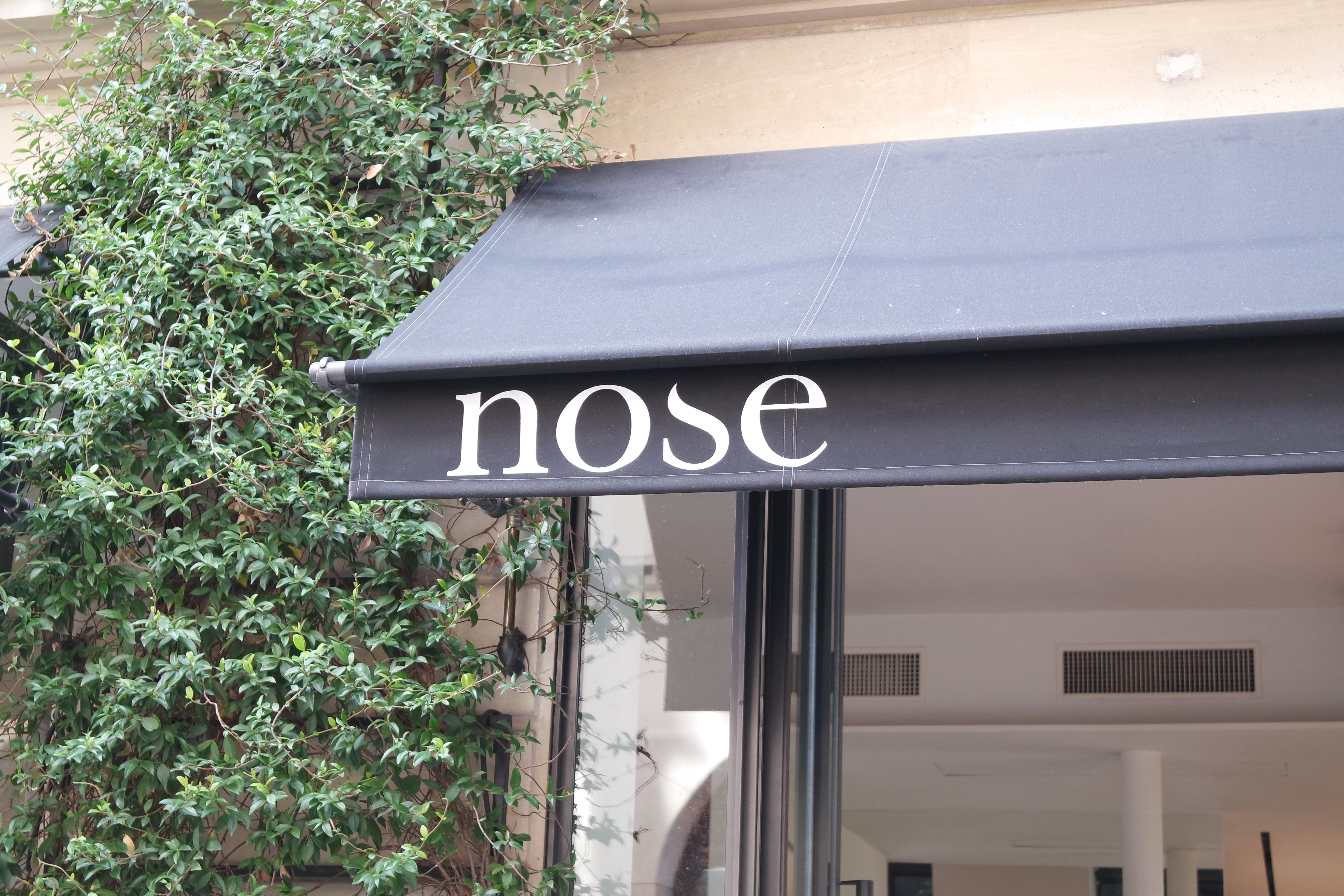 Nose Celest-in.fr