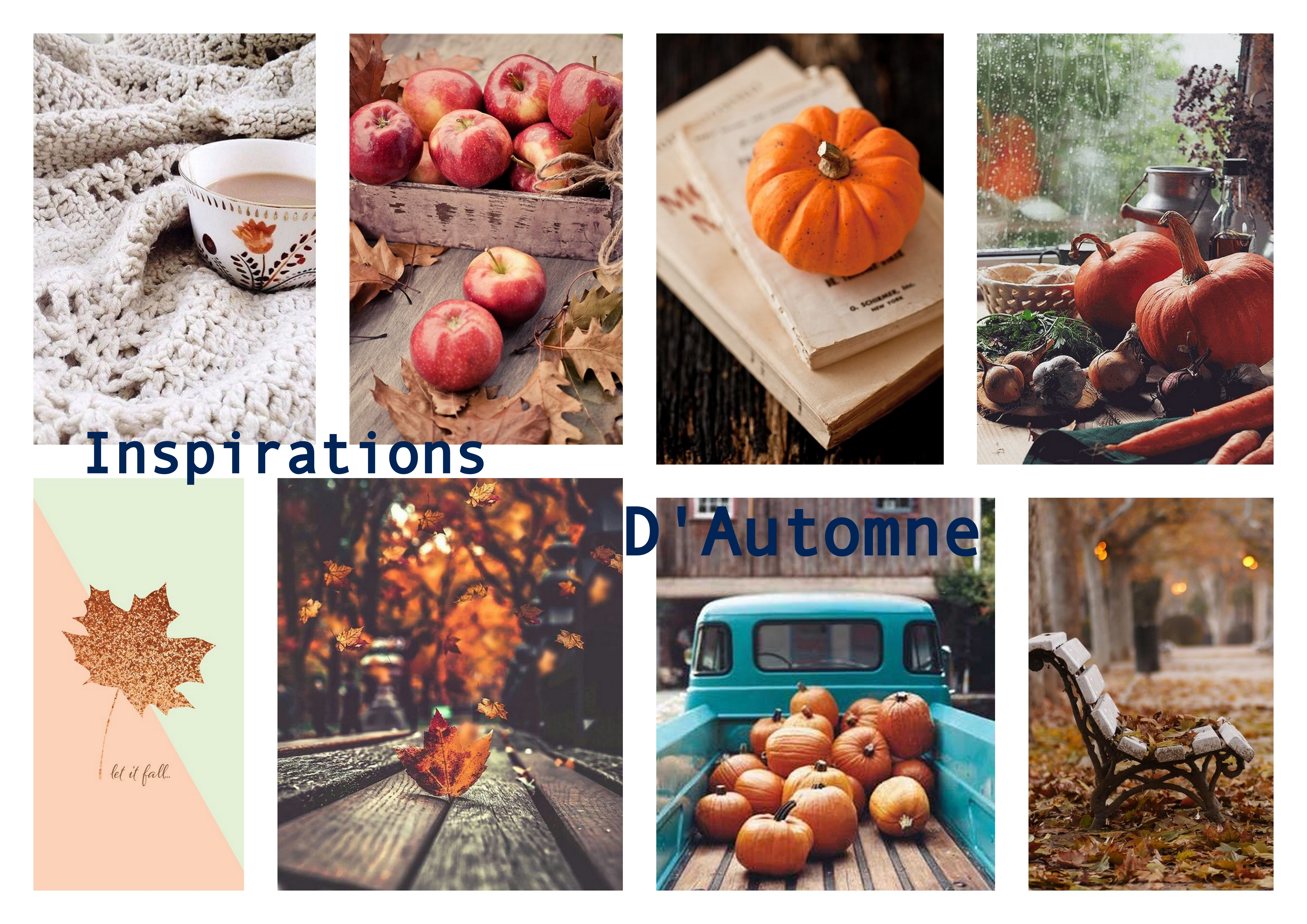 Inspirations Automne-004
